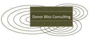 Donor Bliss Consulting